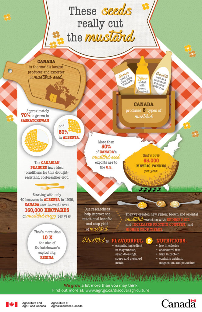 These seeds really cut the mustard: Infographic from Agriculture Canada